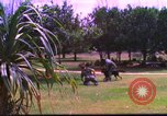 Image of K-9 sentry dog training Phu Cat Air Base Vietnam, 1969, second 10 stock footage video 65675028492