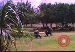 Image of K-9 sentry dog training Phu Cat Air Base Vietnam, 1969, second 11 stock footage video 65675028492