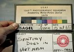 Image of sentry dogs Tan Son Nhut Air Force Base Vietnam, 1965, second 1 stock footage video 65675028496