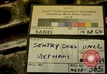 Image of sentry dogs Tan Son Nhut Air Force Base Vietnam, 1965, second 1 stock footage video 65675028497