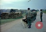 Image of sentry dogs Tan Son Nhut Air Force Base Vietnam, 1965, second 5 stock footage video 65675028497