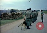 Image of sentry dogs Tan Son Nhut Air Force Base Vietnam, 1965, second 7 stock footage video 65675028497