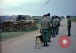 Image of sentry dogs Tan Son Nhut Air Force Base Vietnam, 1965, second 10 stock footage video 65675028497