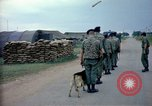 Image of sentry dogs Tan Son Nhut Air Force Base Vietnam, 1965, second 11 stock footage video 65675028497