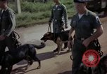 Image of sentry dogs Tan Son Nhut Air Force Base Vietnam, 1965, second 8 stock footage video 65675028500