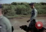 Image of sentry dogs Tan Son Nhut Air Force Base Vietnam, 1965, second 10 stock footage video 65675028500