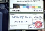Image of sentry dogs Tan Son Nhut Air Force Base Vietnam, 1965, second 2 stock footage video 65675028508