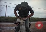 Image of sentry dogs Tan Son Nhut Air Force Base Vietnam, 1965, second 11 stock footage video 65675028510