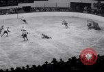 Image of Stanley Cup Detroit Michigan USA, 1941, second 12 stock footage video 65675028551