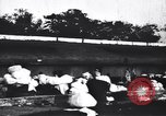 Image of Dhobis working at a Dhobi Ghat India, 1953, second 3 stock footage video 65675028601