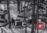 Image of Malamute Alaskan sledge dogs Wonalancet New Hampshire USA, 1934, second 4 stock footage video 65675028712