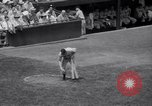 Image of Joe DiMaggio Washington DC USA, 1941, second 12 stock footage video 65675028735