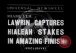 Image of American thoroughbred horse Lawrin at Flamingo Stakes Hialeah Florida USA, 1938, second 1 stock footage video 65675028770