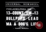 Image of Bulldog named Bright Beauty with her thirteen pups Philadelphia Pennsylvania USA, 1938, second 3 stock footage video 65675028779