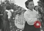 Image of Independene Day celebrations at Tower of Liberation Pyongyang North Korea, 1948, second 6 stock footage video 65675028836