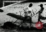 Image of Korean farmers cutting dry land in paddy field Korea, 1936, second 8 stock footage video 65675028842