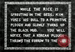 Image of Korean farmer does Ox-plowing Korea, 1936, second 10 stock footage video 65675028845