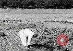 Image of Korean farmers spread manure Korea, 1936, second 11 stock footage video 65675028847