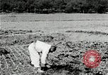 Image of Korean farmers spread manure Korea, 1936, second 12 stock footage video 65675028847