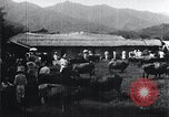 Image of Korean farmers at a bull's market Korea, 1936, second 10 stock footage video 65675028855