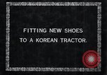 Image of korean farmer nails steel shoes to his bull Korea, 1936, second 2 stock footage video 65675028856