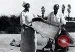 Image of winnowing Korea, 1936, second 11 stock footage video 65675028862