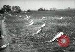 Image of cotton picking contest Arkansas United States USA, 1957, second 4 stock footage video 65675028966