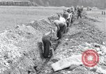 Image of burial pit Arnstadt Germany, 1945, second 6 stock footage video 65675029051