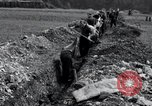 Image of burial pit Arnstadt Germany, 1945, second 7 stock footage video 65675029051