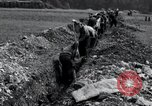 Image of burial pit Arnstadt Germany, 1945, second 8 stock footage video 65675029051
