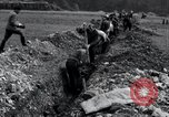 Image of burial pit Arnstadt Germany, 1945, second 9 stock footage video 65675029051