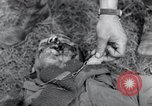 Image of Fallen American soldiers Hilden Germany, 1945, second 9 stock footage video 65675029061