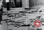 Image of Piled corpses Mauthausen Austria, 1945, second 7 stock footage video 65675029085