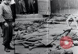 Image of Piled corpses Mauthausen Austria, 1945, second 9 stock footage video 65675029085