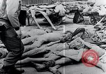 Image of Piled corpses Mauthausen Austria, 1945, second 10 stock footage video 65675029085