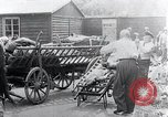Image of Concentration Camp victims Mauthausen Austria, 1945, second 1 stock footage video 65675029087