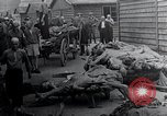 Image of Concentration Camp victims Mauthausen Austria, 1945, second 11 stock footage video 65675029087