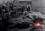 Image of Concentration Camp victims Mauthausen Austria, 1945, second 12 stock footage video 65675029087