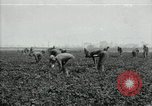Image of American 302nd Engineers France, 1918, second 1 stock footage video 65675029213