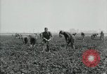 Image of American 302nd Engineers France, 1918, second 10 stock footage video 65675029213