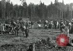 Image of Russian women work removing stumps Archangel Russia, 1918, second 3 stock footage video 65675029280