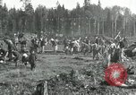 Image of Russian women work removing stumps Archangel Russia, 1918, second 5 stock footage video 65675029280