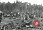Image of Russian women work removing stumps Archangel Russia, 1918, second 7 stock footage video 65675029280