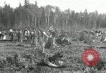 Image of Russian women work removing stumps Archangel Russia, 1918, second 8 stock footage video 65675029280