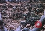 Image of flamethrower Iwo Jima, 1945, second 12 stock footage video 65675029327