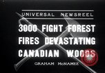 Image of forest fire Secord Township Ontario Canada, 1936, second 1 stock footage video 65675029433