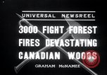 Image of forest fire Secord Township Ontario Canada, 1936, second 2 stock footage video 65675029433