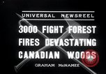 Image of forest fire Secord Township Ontario Canada, 1936, second 5 stock footage video 65675029433