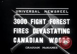 Image of forest fire Secord Township Ontario Canada, 1936, second 8 stock footage video 65675029433