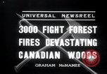 Image of forest fire Secord Township Ontario Canada, 1936, second 9 stock footage video 65675029433